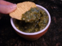 Salsa and Chip